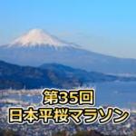 cc810d4f40fca75dd12a31c8768b70ae 150x150 - 【結果速報】第35回日本平桜マラソン:2019年4月7日(日)